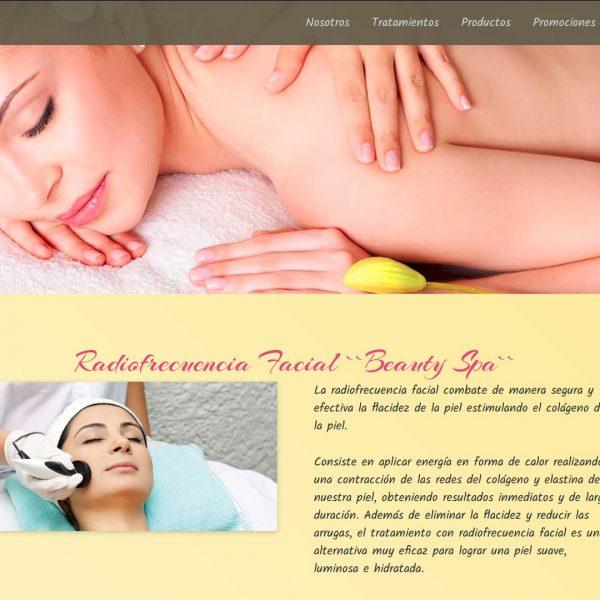 Diseño y desarrollo web: Beauty & Style